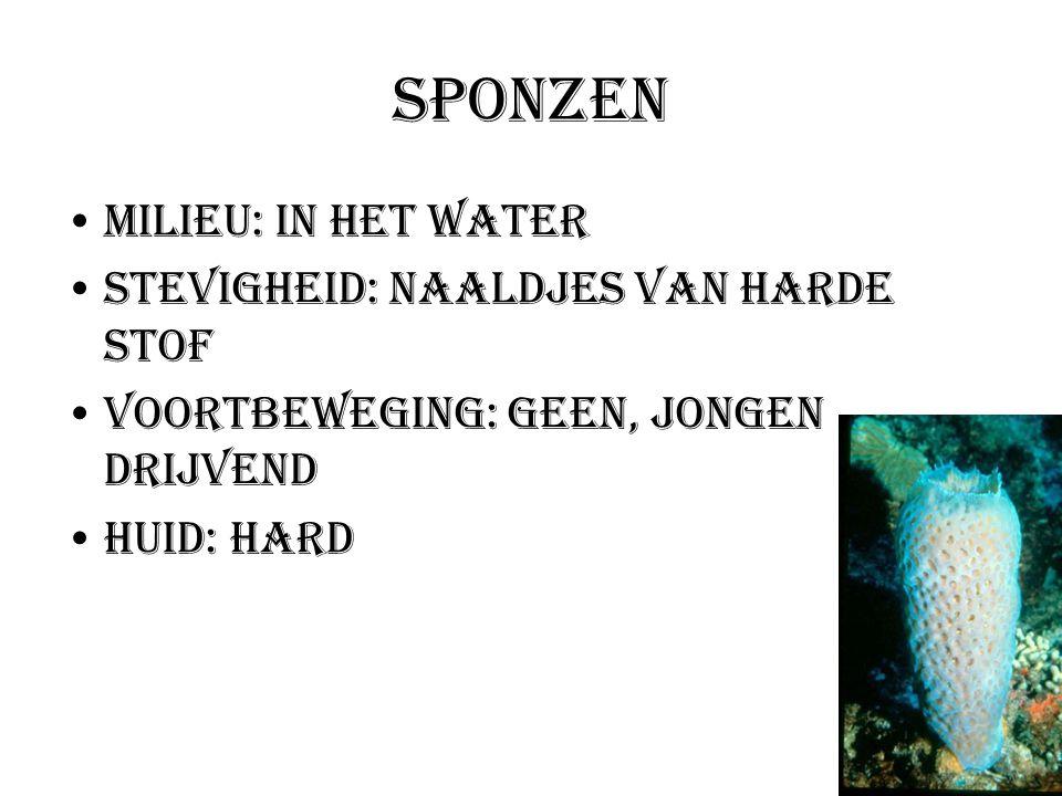 Milieu: In het water Stevigheid: Naaldjes van harde stof Voortbeweging: geen, jongen drijvend Huid: hard