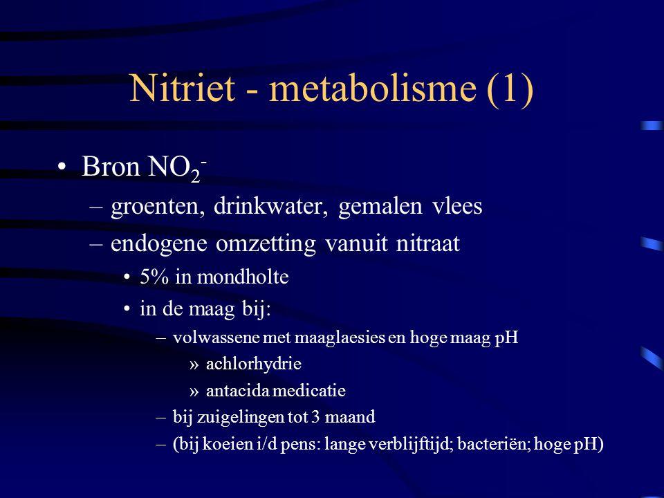Nitriet - metabolisme (1) Bron NO 2 - –groenten, drinkwater, gemalen vlees –endogene omzetting vanuit nitraat 5% in mondholte in de maag bij: –volwass