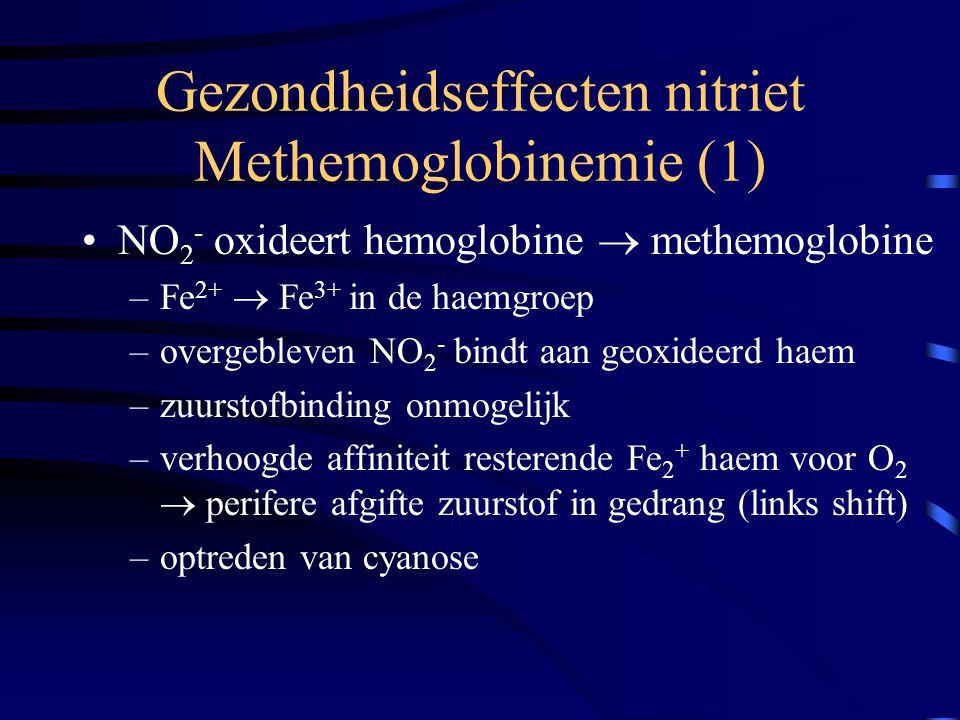 Gezondheidseffecten nitriet Methemoglobinemie (1) NO 2 - oxideert hemoglobine  methemoglobine –Fe 2+  Fe 3+ in de haemgroep –overgebleven NO 2 - bin