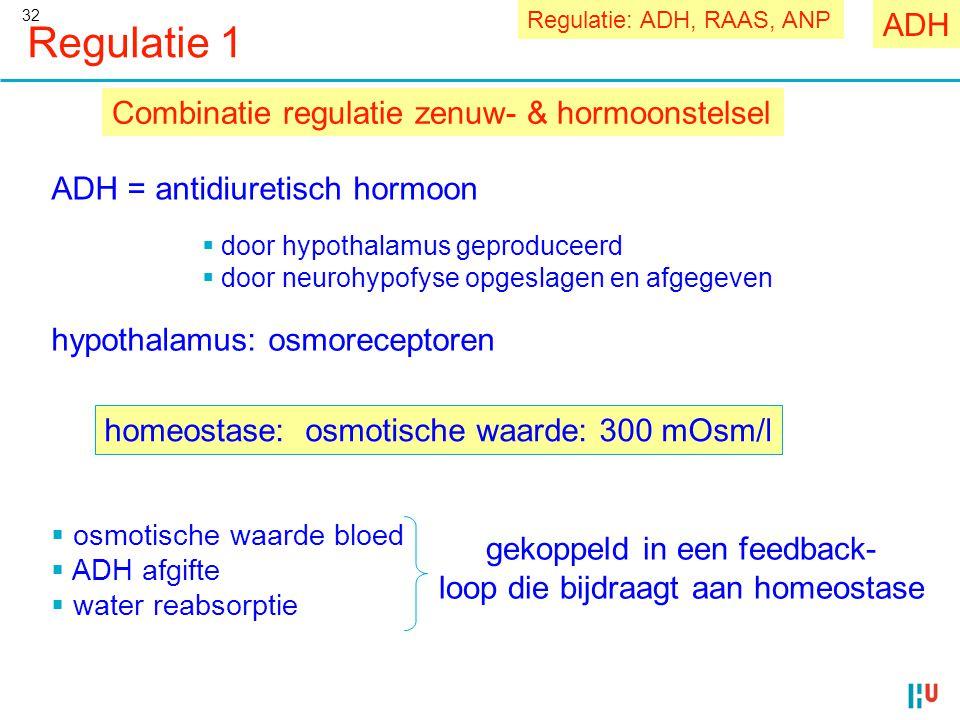 32 Regulatie 1 Combinatie regulatie zenuw- & hormoonstelsel  osmotische waarde bloed  ADH afgifte  water reabsorptie gekoppeld in een feedback- loo