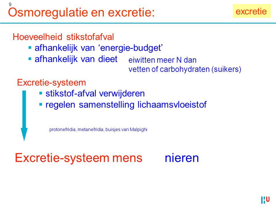 9 Hoeveelheid stikstofafval  afhankelijk van 'energie-budget'  afhankelijk van dieet eiwitten meer N dan vetten of carbohydraten (suikers) Excretie-