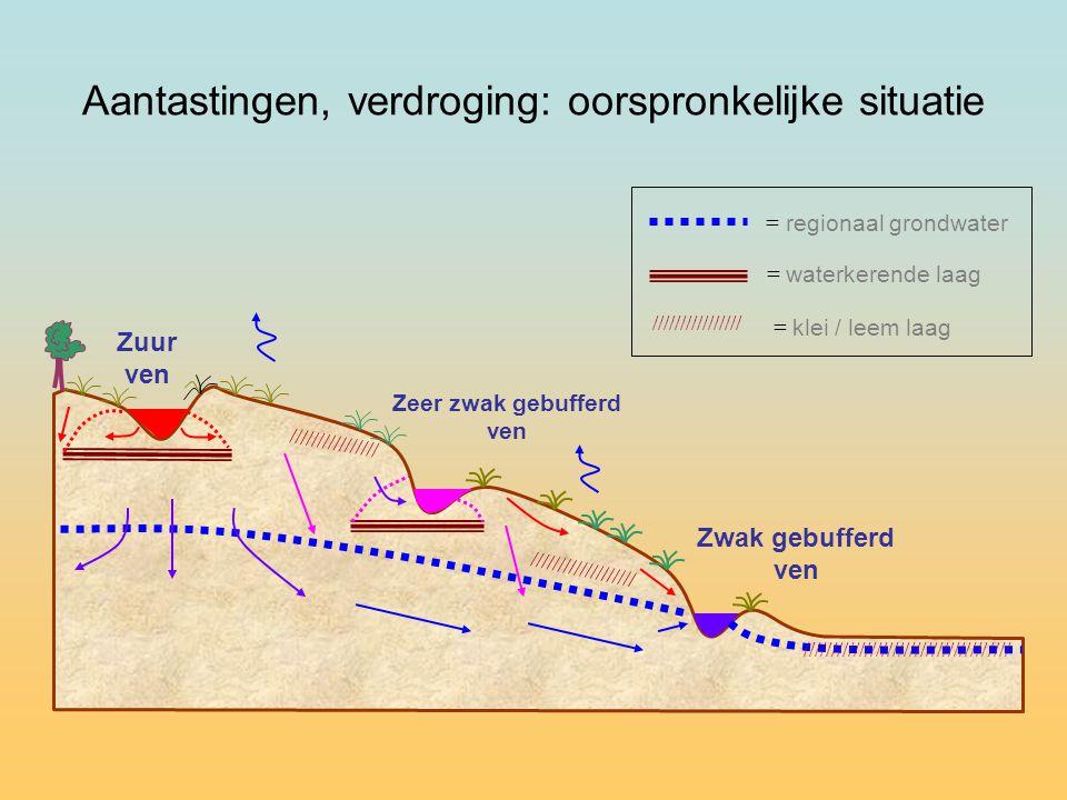 Zuur ven Zeer zwak gebufferd ven = regionaal grondwater = waterkerende laag //////////////// = klei / leem laag //////////////// /////////////////// Zwak gebufferd ven Aantastingen, verdroging: oorspronkelijke situatie /////////////////////////////////////