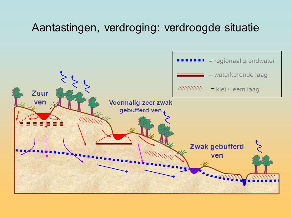 Zuur ven Voormalig zeer zwak gebufferd ven = regionaal grondwater = waterkerende laag //////////////// = klei / leem laag //////////////// /////////////////// Zwak gebufferd ven Aantastingen, verdroging: verdroogde situatie ///////////////
