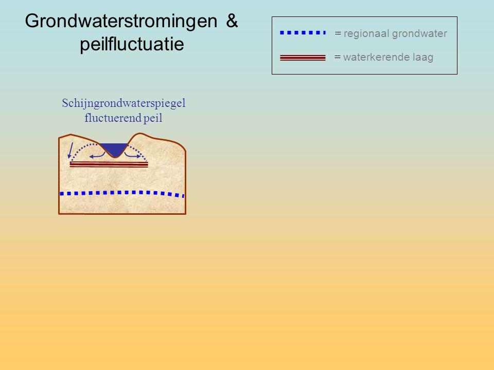 Schijngrondwaterspiegel fluctuerend peil = waterkerende laag = regionaal grondwater