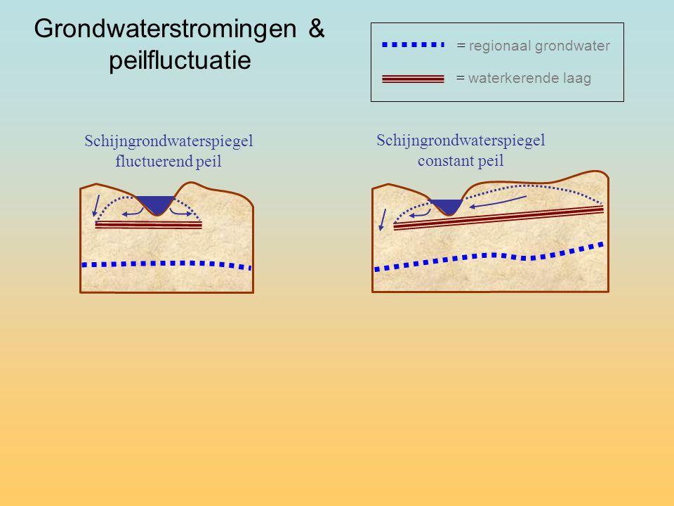 Grondwaterstromingen & peilfluctuatie Schijngrondwaterspiegel fluctuerend peil = waterkerende laag = regionaal grondwater Schijngrondwaterspiegel constant peil
