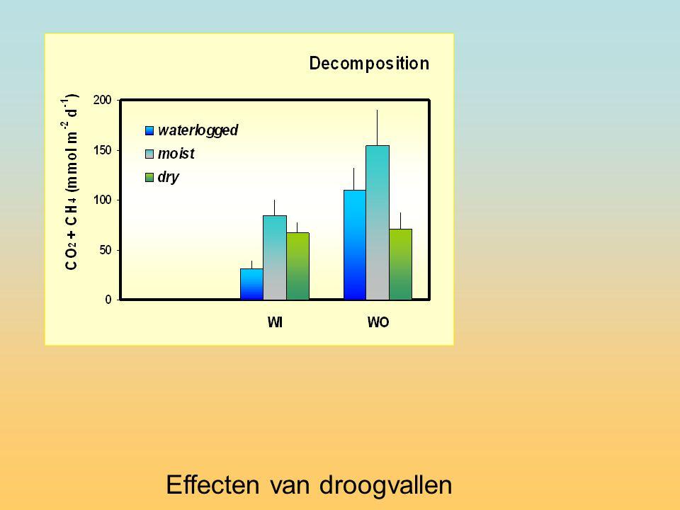 Effecten van droogvallen