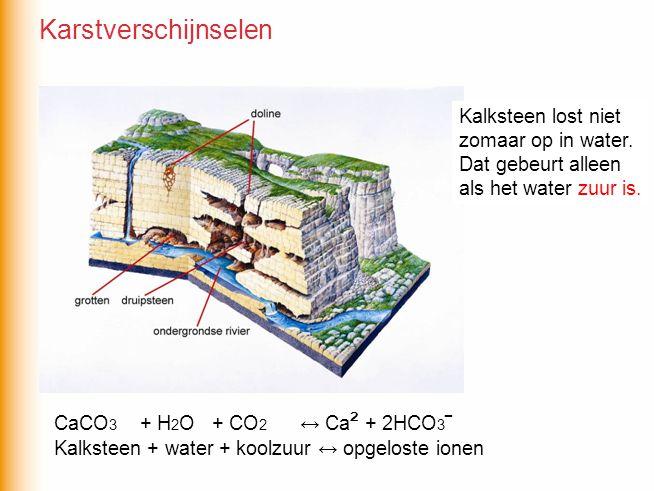 CaCO 3 + H 2 O + CO 2 ↔ Ca ² + 2HCO 3 ‾ Kalksteen + water + koolzuur ↔ opgeloste ionen Kalksteen lost niet zomaar op in water. Dat gebeurt alleen als