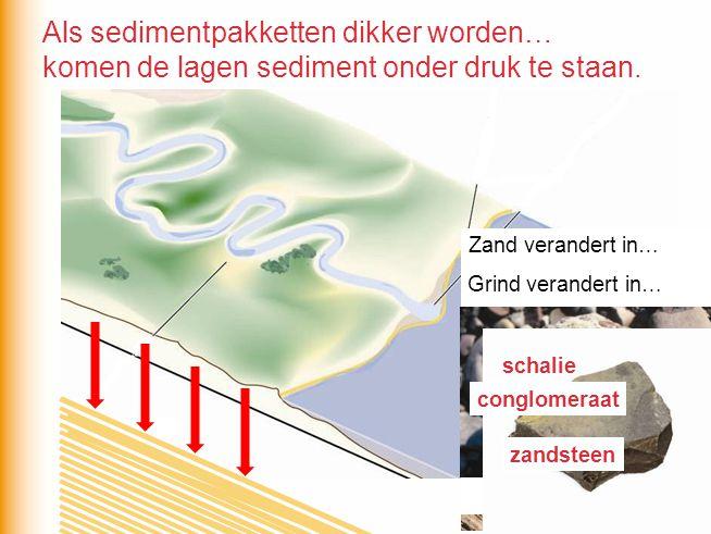 komen de lagen sediment onder druk te staan. Zand verandert in… Klei verandert in… Grind verandert in… zandsteen conglomeraat schalie Als sedimentpakk