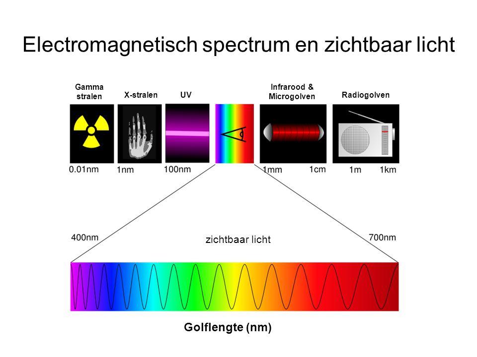 Electromagnetisch spectrum en zichtbaar licht Gamma stralen X-stralenUV Infrarood & Microgolven Radiogolven Golflengte (nm) zichtbaar licht