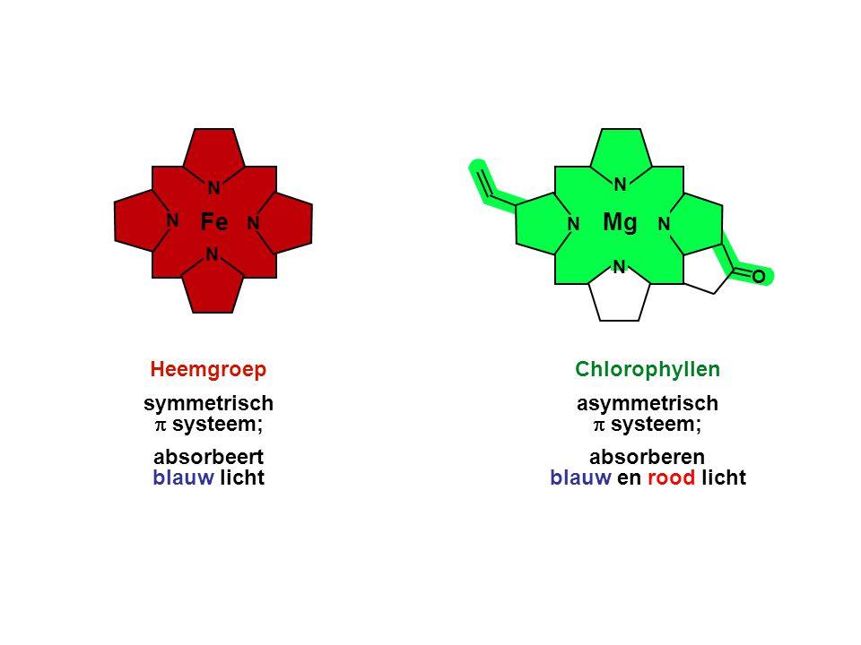 NN N N Fe Heemgroep symmetrisch  systeem; absorbeert blauw licht Chlorophyllen asymmetrisch  systeem; absorberen blauw en rood licht N N N N Mg O
