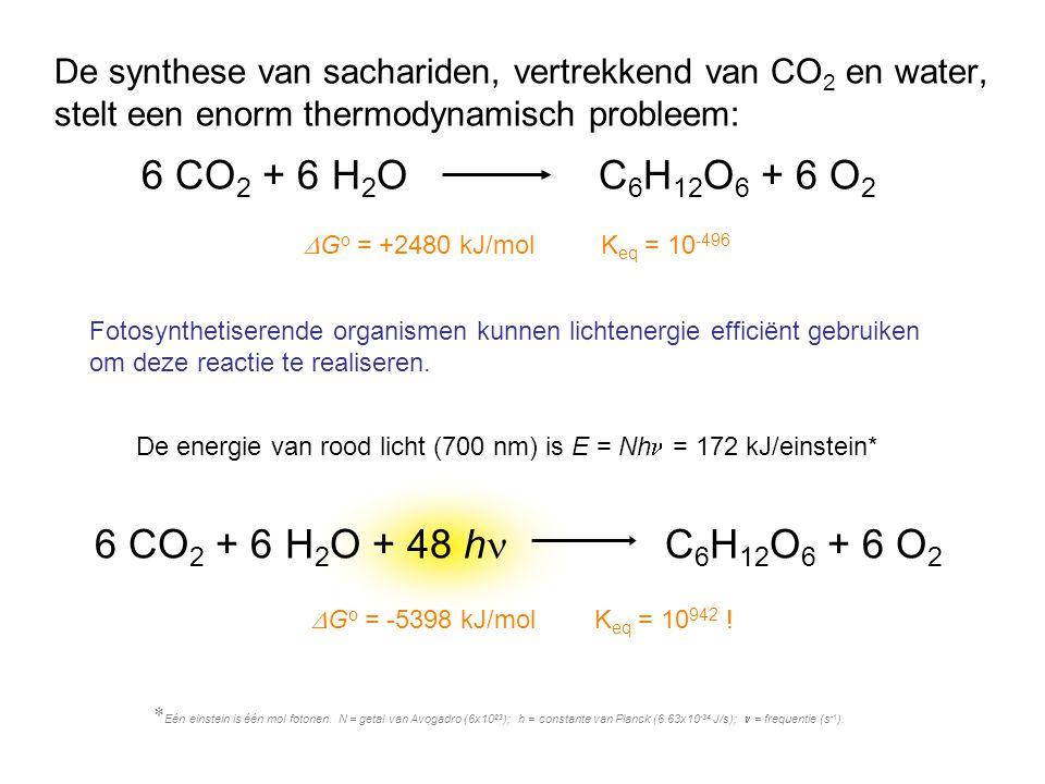 6 CO 2 + 6 H 2 O + 48 h C 6 H 12 O 6 + 6 O 2  G o = -5398 kJ/mol K eq = 10 942 ! De synthese van sachariden, vertrekkend van CO 2 en water, stelt een