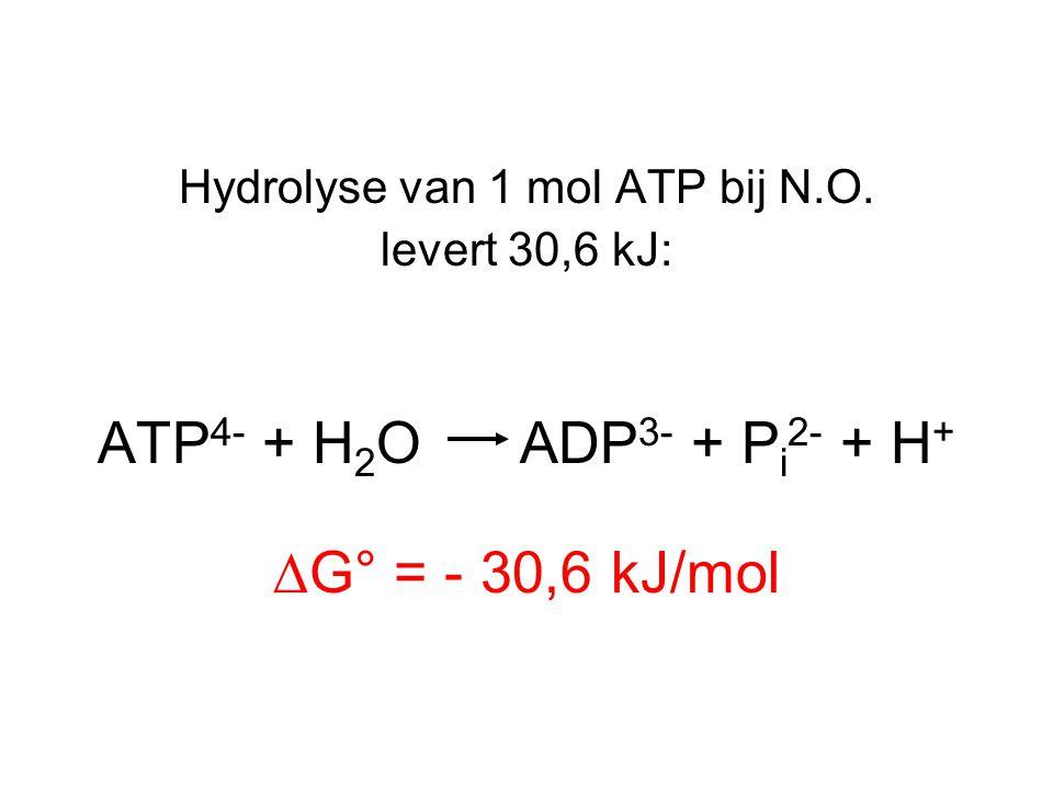 Hydrolyse van 1 mol ATP bij N.O. levert 30,6 kJ: ATP 4- + H 2 O ADP 3- + P i 2- + H + ∆G° = - 30,6 kJ/mol