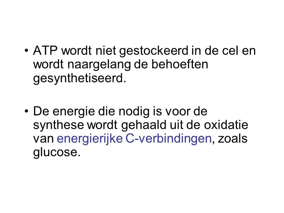 ATP wordt niet gestockeerd in de cel en wordt naargelang de behoeften gesynthetiseerd. De energie die nodig is voor de synthese wordt gehaald uit de o