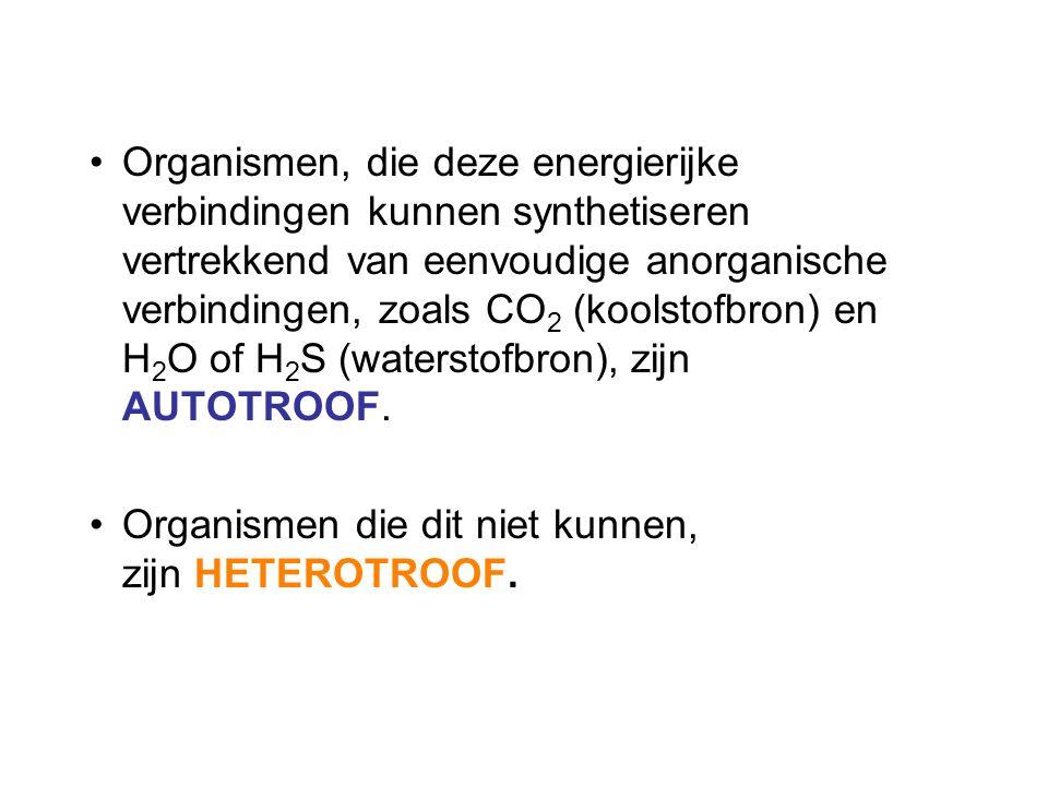 Organismen, die deze energierijke verbindingen kunnen synthetiseren vertrekkend van eenvoudige anorganische verbindingen, zoals CO 2 (koolstofbron) en