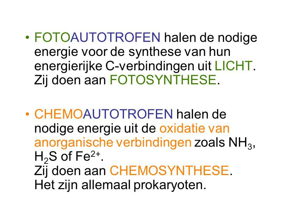 FOTOAUTOTROFEN halen de nodige energie voor de synthese van hun energierijke C-verbindingen uit LICHT. Zij doen aan FOTOSYNTHESE. CHEMOAUTOTROFEN hale