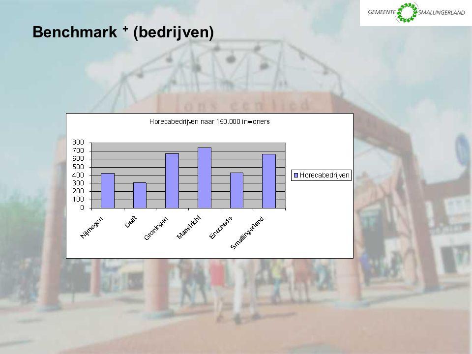 Benchmark + (bedrijven)