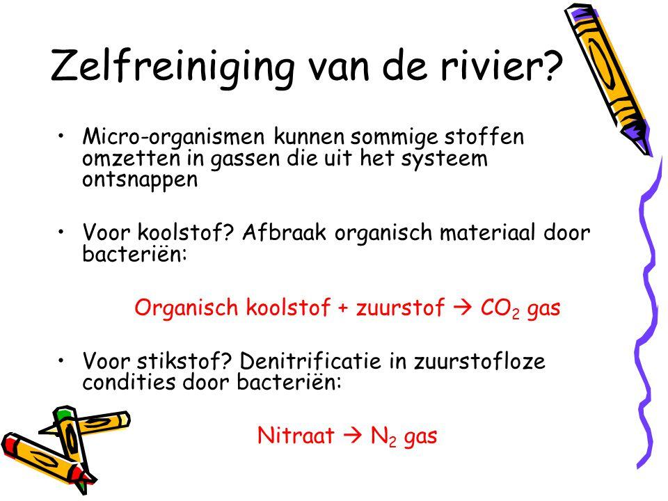 Zelfreiniging van de rivier? Micro-organismen kunnen sommige stoffen omzetten in gassen die uit het systeem ontsnappen Voor koolstof? Afbraak organisc