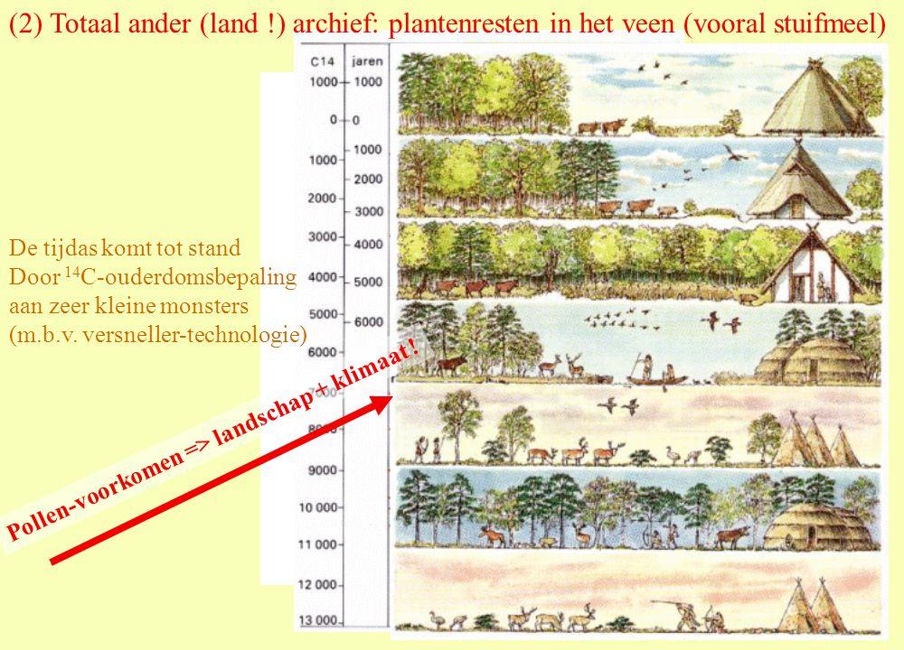 (2) Totaal ander (land !) archief: plantenresten in het veen (vooral stuifmeel) De tijdas komt tot stand Door 14 C-ouderdomsbepaling aan zeer kleine monsters (m.b.v.