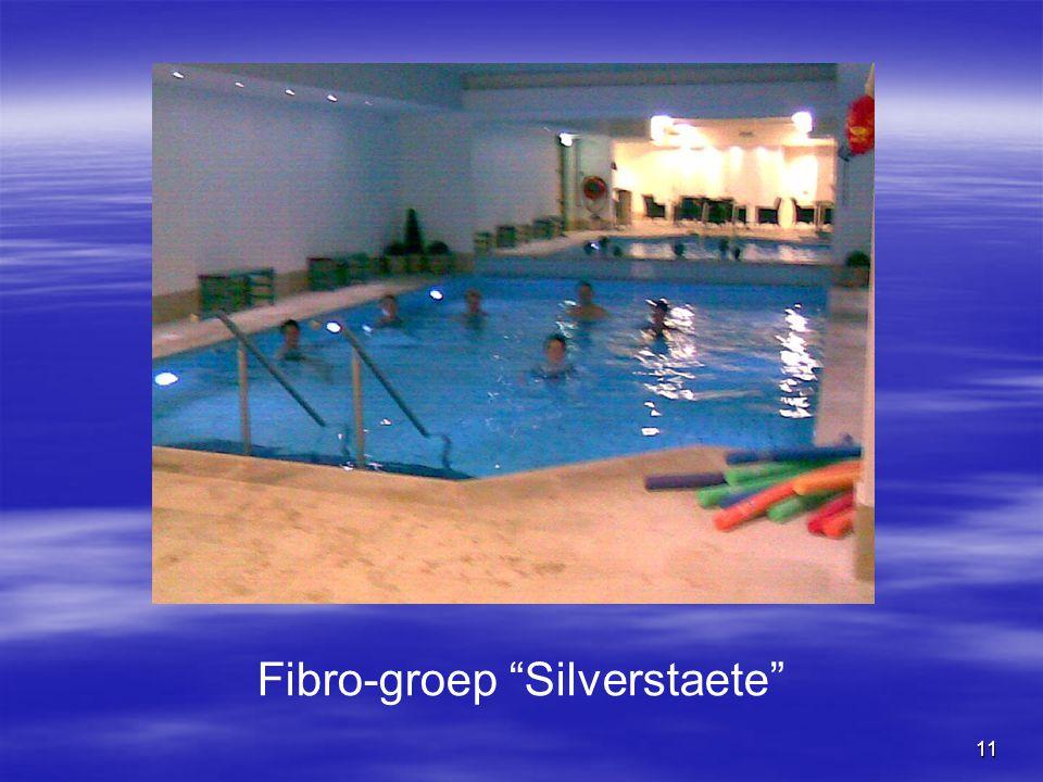 "11 Fibro-groep ""Silverstaete"""