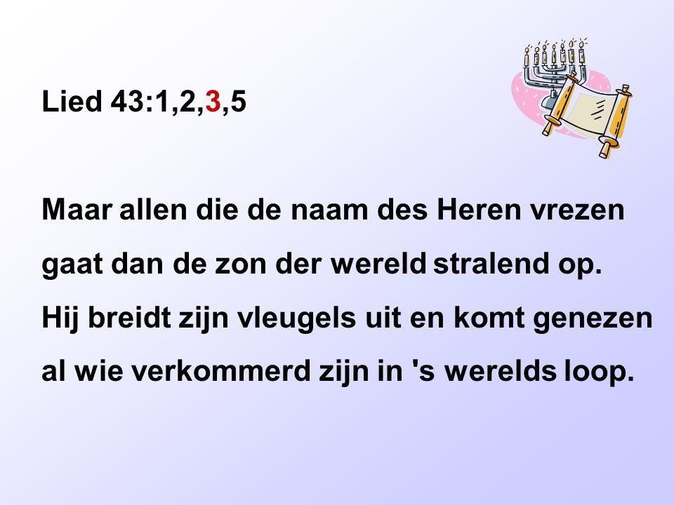 Lied 43:1,2,3,5 Dit is de dag, de grote dag des Heren als alle onrecht brandende vergaat, het daglicht zal in duisternis verkeren, maar uit de nacht verrijst de dageraad.
