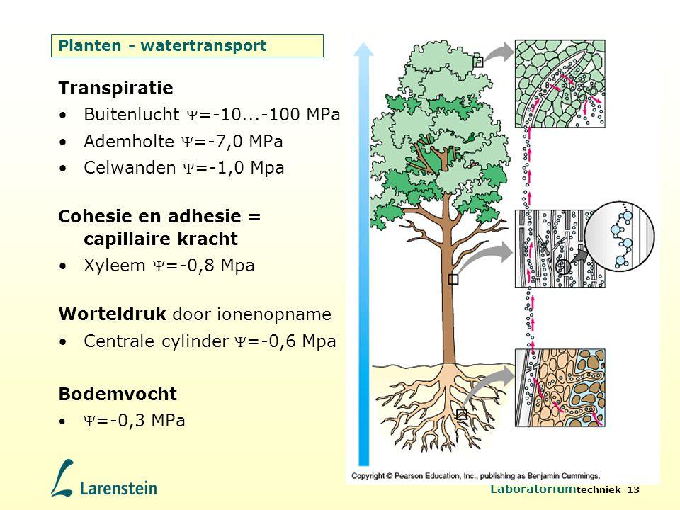 Laboratorium techniek 13 Planten - watertransport Transpiratie Buitenlucht  =-10...-100 MPa Ademholte  =-7,0 MPa Celwanden  =-1,0 Mpa Cohesie en ad