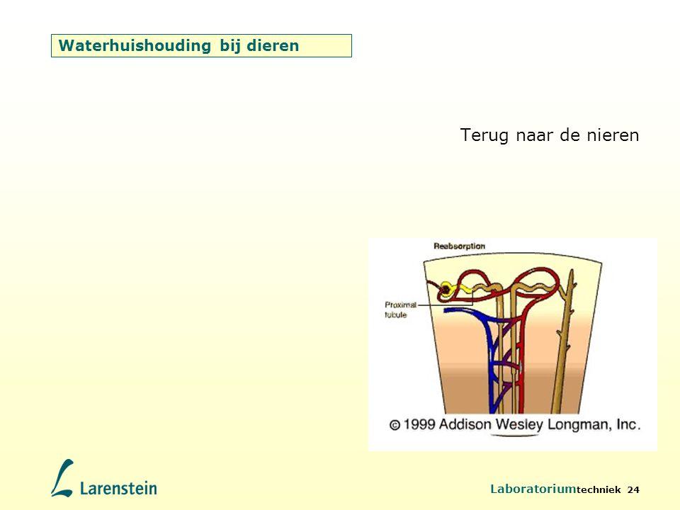 Laboratorium techniek 24 Waterhuishouding bij dieren Terug naar de nieren