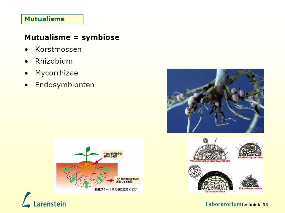 Laboratorium techniek 53 Mutualisme Mutualisme = symbiose Korstmossen Rhizobium Mycorrhizae Endosymbionten