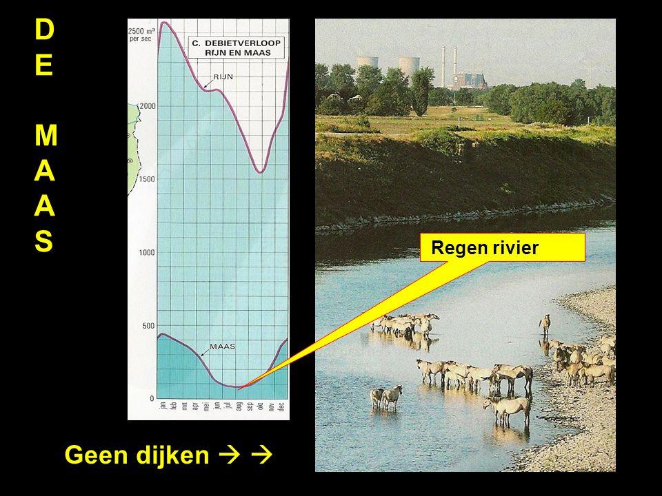 DEMAASDEMAAS Geen dijken   Regen rivier