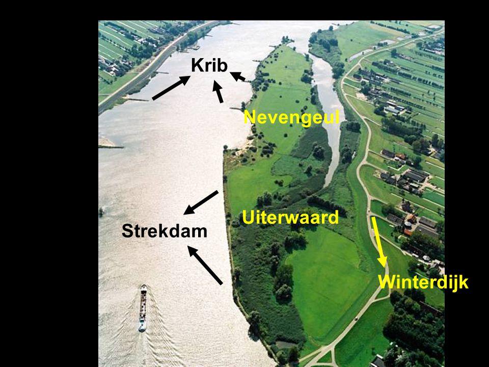 Krib Strekdam Winterdijk Uiterwaard Nevengeul