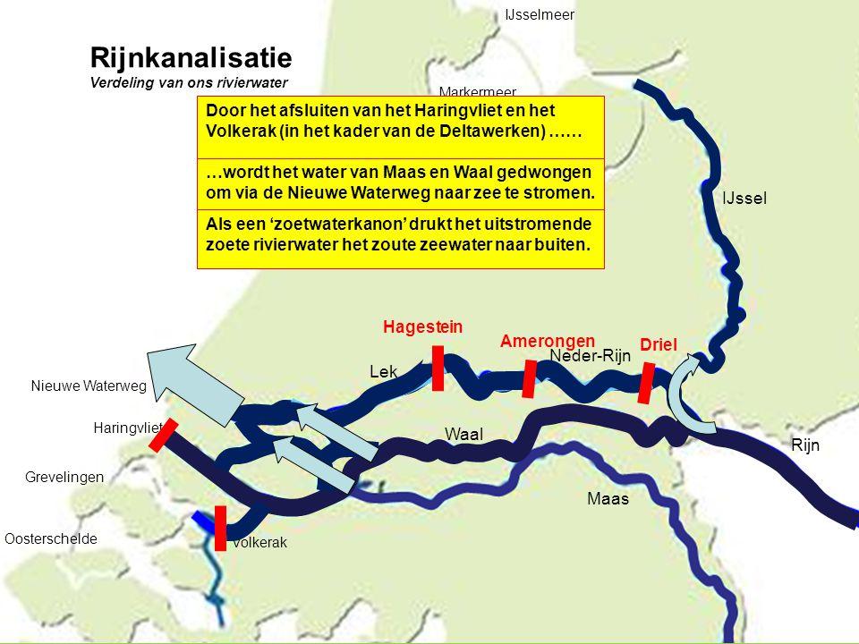 IJssel Rijn Maas Neder-Rijn Lek Waal Nieuwe Waterweg Haringvliet Grevelingen Oosterschelde IJsselmeer Markermeer Door het afsluiten van het Haringvlie