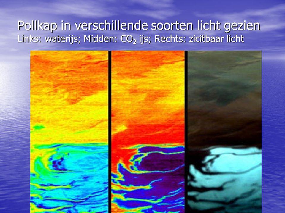 Pollkap in verschillende soorten licht gezien Links: waterijs; Midden: CO 2 ijs; Rechts: zicitbaar licht