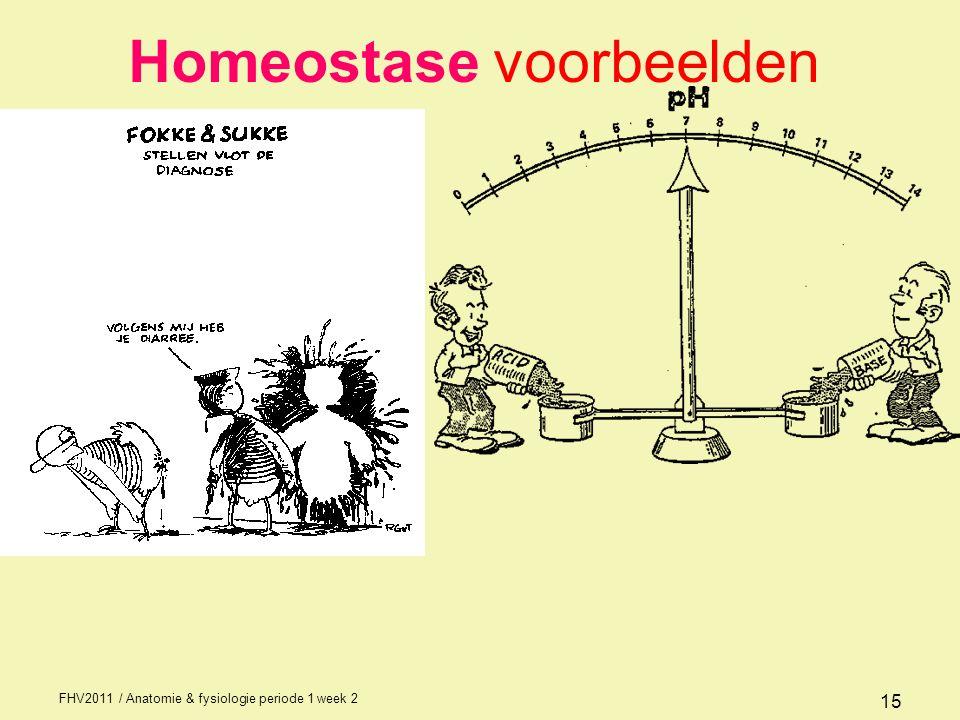 FHV2011 / Anatomie & fysiologie periode 1 week 2 15 Homeostase voorbeelden