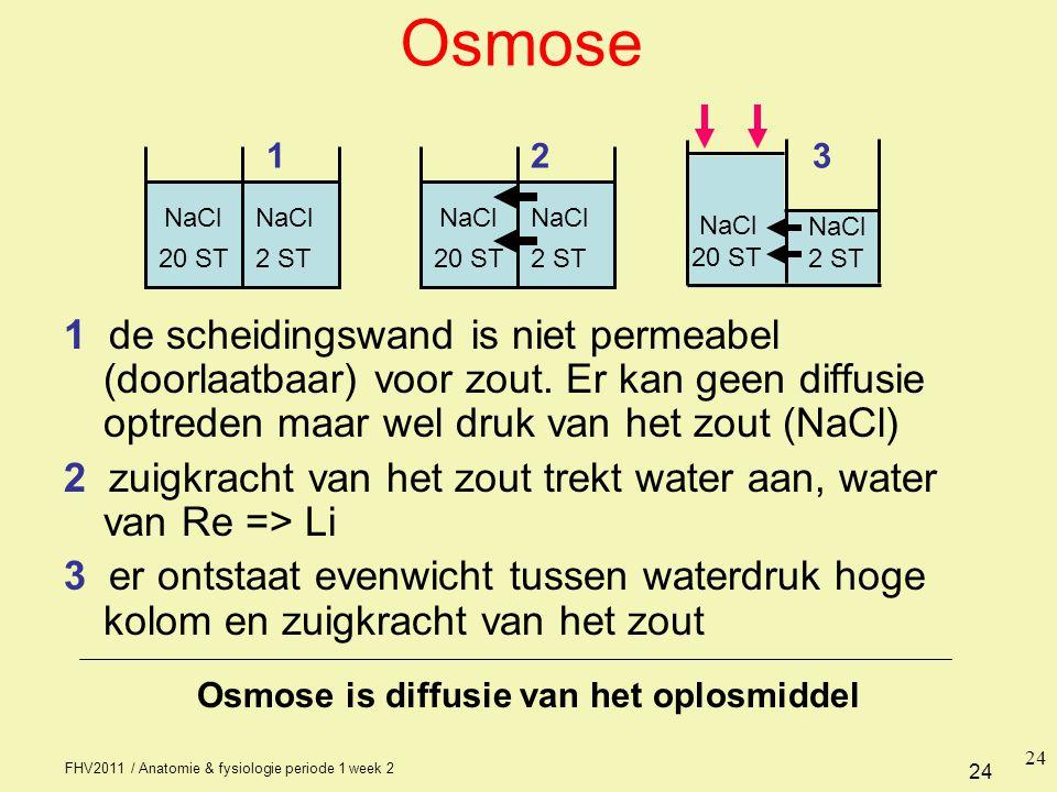 FHV2011 / Anatomie & fysiologie periode 1 week 2 24 NaCl 20 ST2 ST Osmose 1 de scheidingswand is niet permeabel (doorlaatbaar) voor zout. Er kan geen