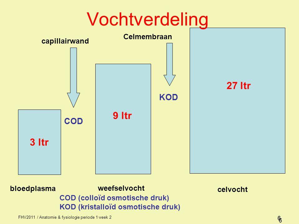 FHV2011 / Anatomie & fysiologie periode 1 week 2 6 3 ltr bloedplasma weefselvocht celvocht COD capillairwand KOD Celmembraan 9 ltr 27 ltr 6 Vochtverdeling COD (colloïd osmotische druk) KOD (kristalloïd osmotische druk)