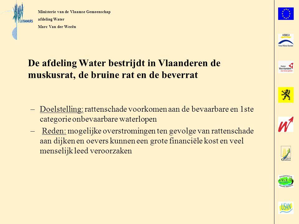 Ministerie van de Vlaamse gemeenschap afdeling Water Marc Van der Weeën Bestrijdingsaanpak van de afdeling Water Continue bestrijding in een brede zone langs de waterlopen Op een actieve wijze muskusratten opsporen en snel wegvangen Enkel bestrijding met klemmen en fuiken die worden geplaatst op sporen en aan nesten Bestrijding met minimale milieuverstoring, nevenvangsten en dierenleed Vangstresultaten: –2002: 42.000 muskusratten –2003: 25.000 muskusratten –2004: 19.000 muskusratten