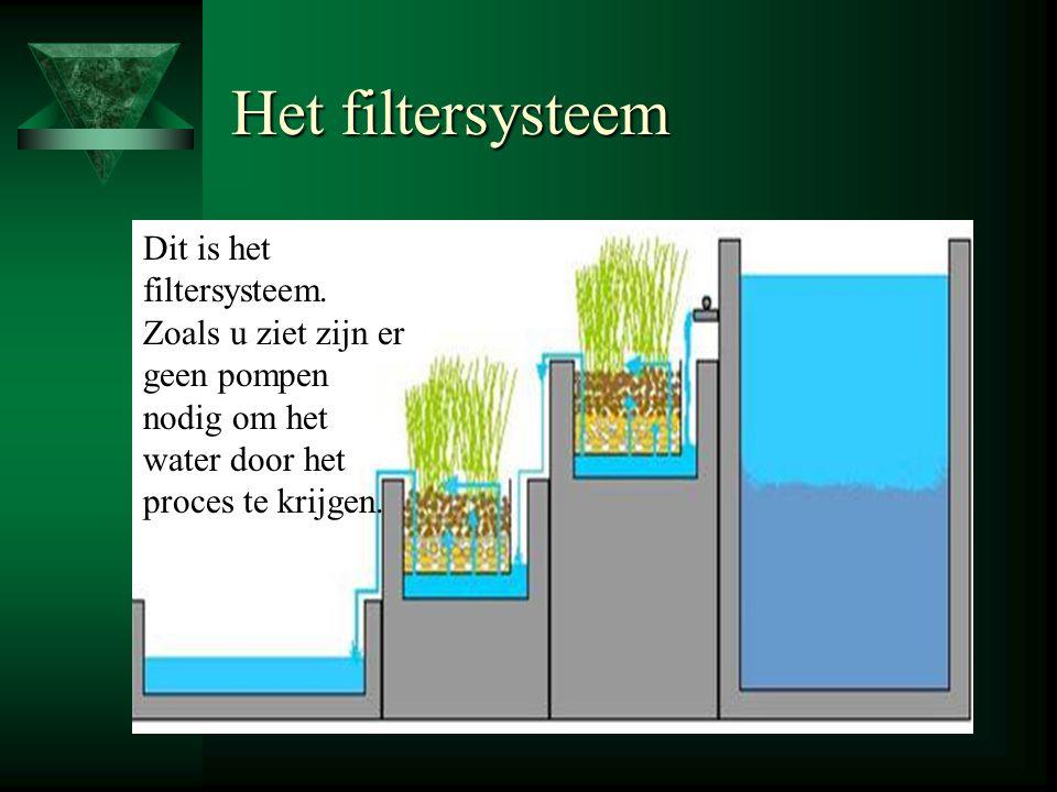 Nieuw voorstel: vijver met gezuiverd regenwater Copyright 2003-2004 © Vijvers & OLVE, Inc. reservoir 1: bezinken van grove verontreiniging 1e biofilte