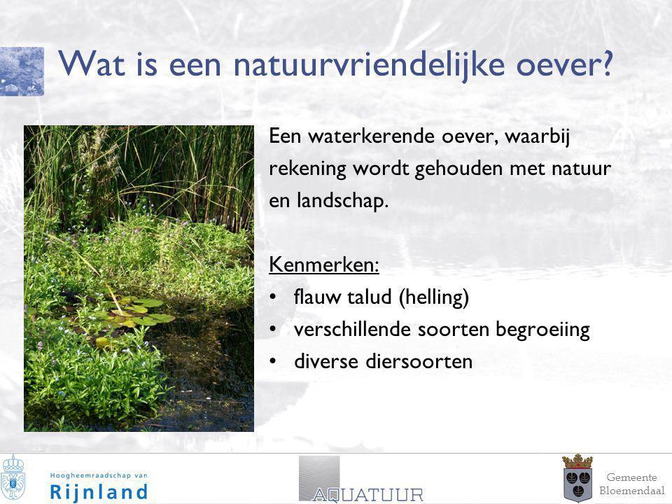 2 Wat is een natuurvriendelijke oever? Een waterkerende oever, waarbij rekening wordt gehouden met natuur en landschap. Kenmerken: flauw talud (hellin