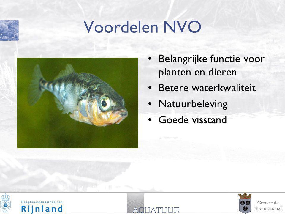 9 Voordelen NVO Belangrijke functie voor planten en dieren Betere waterkwaliteit Natuurbeleving Goede visstand Gemeente Bloemendaal