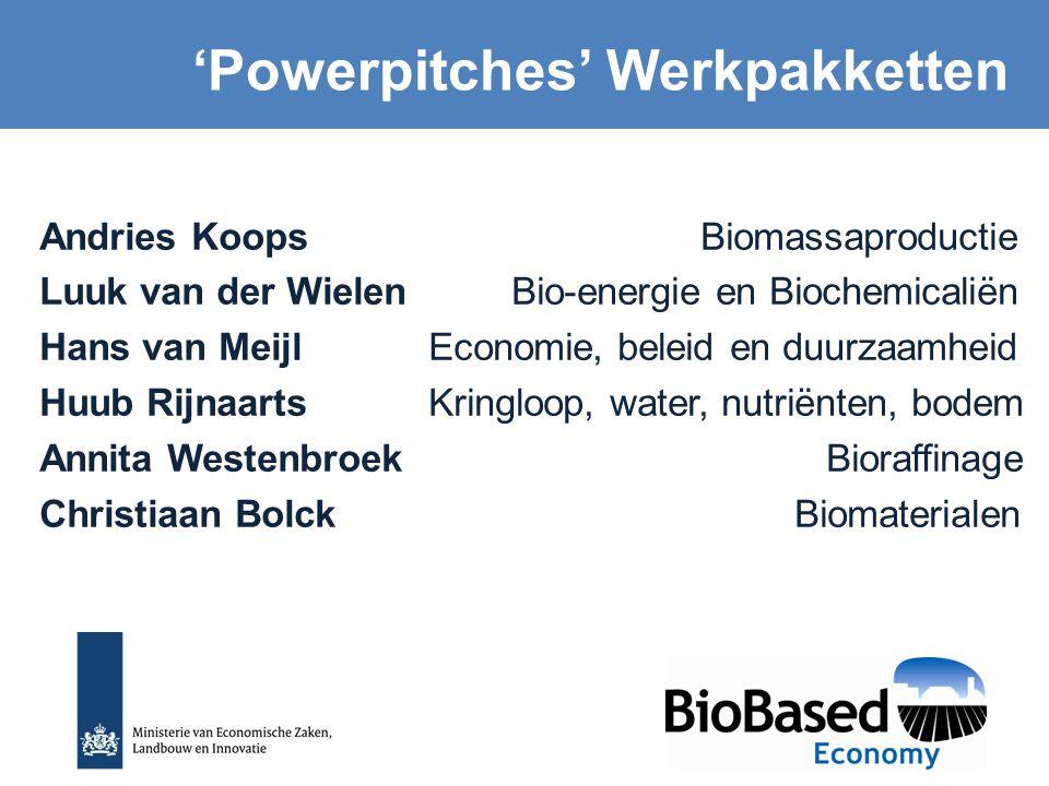 Andries Koops Biomassaproductie Luuk van der Wielen Bio-energie en Biochemicaliën Hans van Meijl Economie, beleid en duurzaamheid Huub Rijnaarts Kring