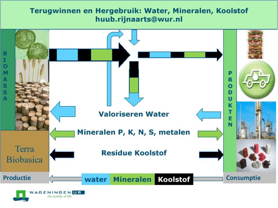 Toepassingsgebieden van biomassa