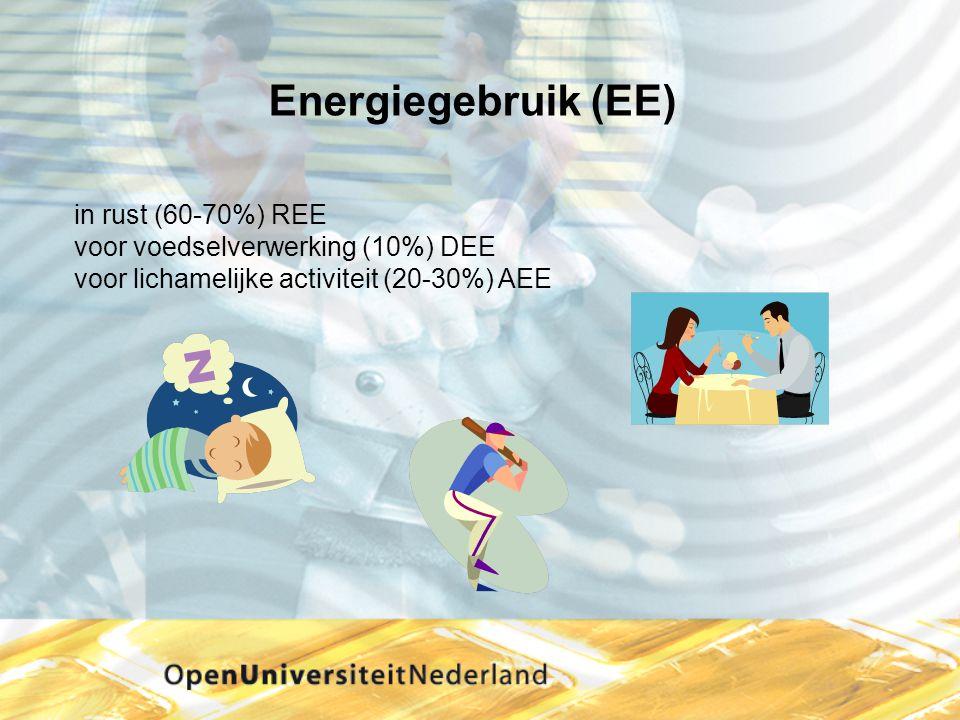 Energiegebruik (EE) in rust (60-70%) REE voor voedselverwerking (10%) DEE voor lichamelijke activiteit (20-30%) AEE