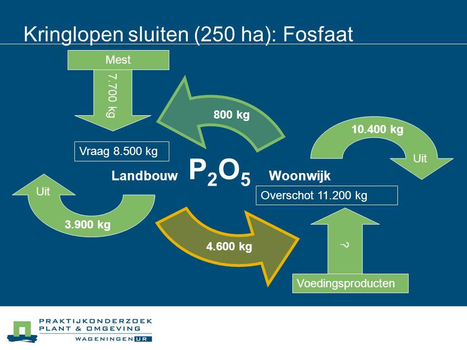 Kringlopen sluiten (250 ha): Fosfaat P2O5P2O5 4.600 kg 800 kg Overschot 11.200 kg 10.400 kg 3.900 kg Vraag 8.500 kg 7.700 kg Mest ? Voedingsproducten