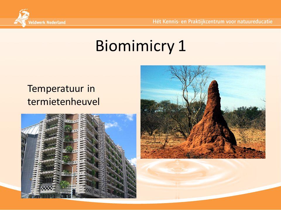 Biomimicry 1 Temperatuur in termietenheuvel