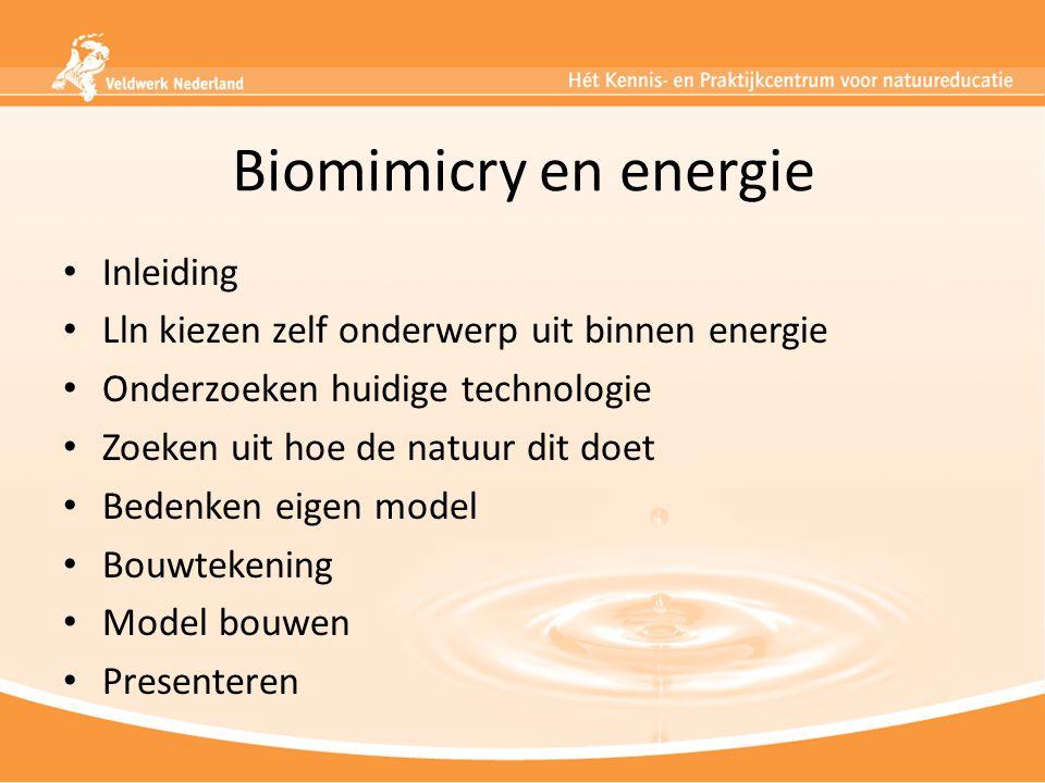 Biomimicry en energie Inleiding Lln kiezen zelf onderwerp uit binnen energie Onderzoeken huidige technologie Zoeken uit hoe de natuur dit doet Bedenke