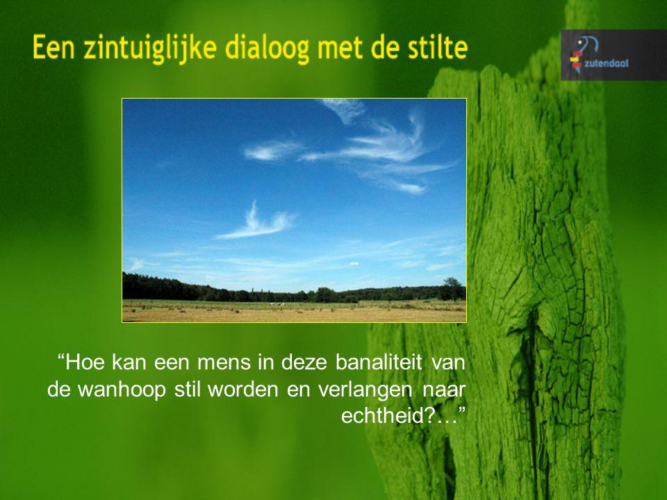 stilte als leidraad om de ecologische en landschappelijke waarden van het platteland te benadrukken