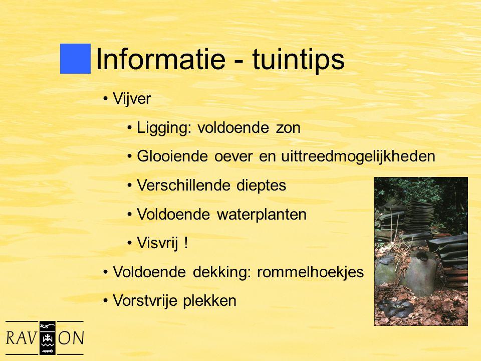 Informatie - tuintips Vijver Ligging: voldoende zon Glooiende oever en uittreedmogelijkheden Verschillende dieptes Voldoende waterplanten Visvrij ! Vo