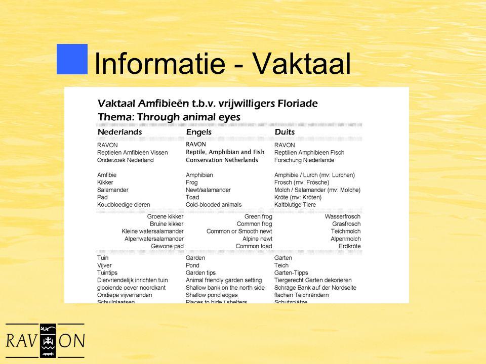 Informatie - Vaktaal