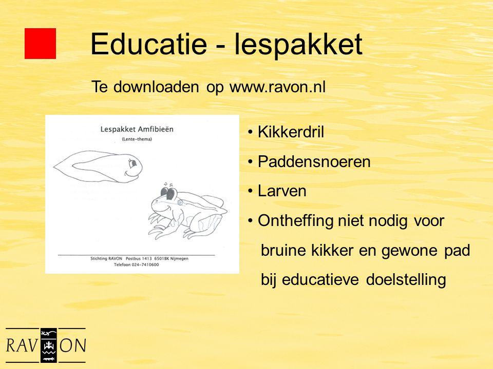 Educatie - lespakket Kikkerdril Paddensnoeren Larven Ontheffing niet nodig voor bruine kikker en gewone pad bij educatieve doelstelling Te downloaden