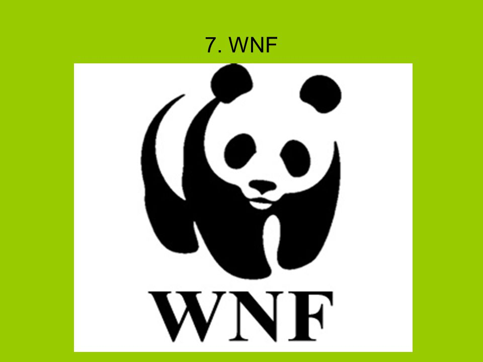 7. WNF