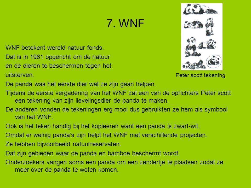 WNF betekent wereld natuur fonds.